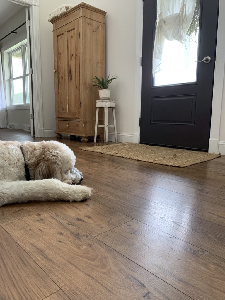 Pergo Flooring Review Faqs Sarah